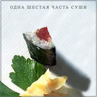 Одна шестая часть суши