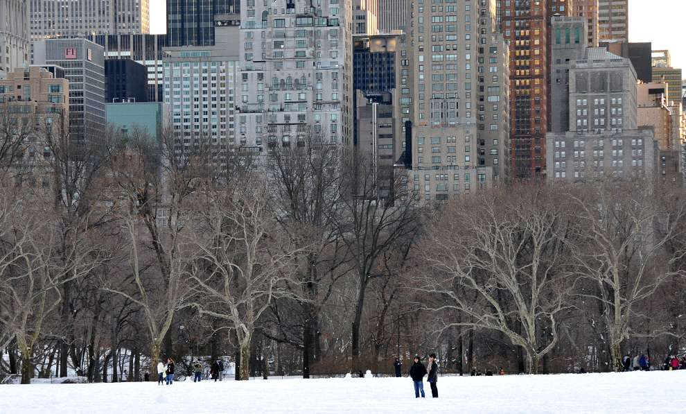Central Park культуры и отдыха