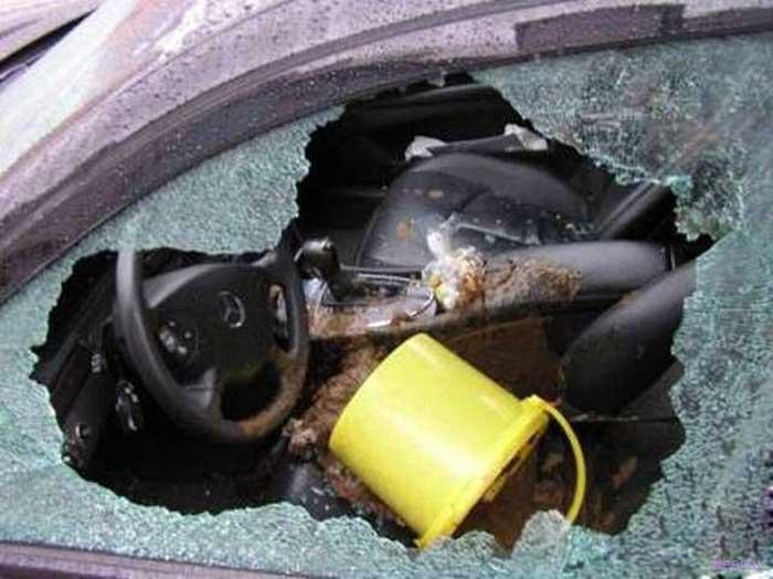 Способы дрессировки диких автовладельцев