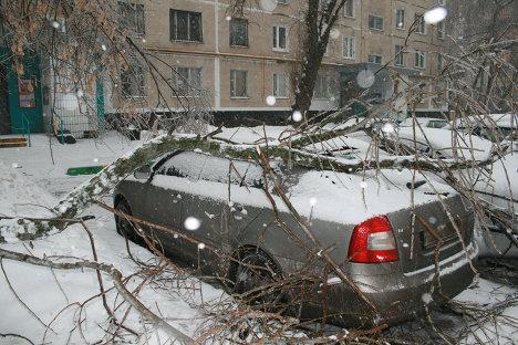 Оледенение в Москве