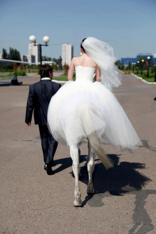 Кому и кобыла невеста