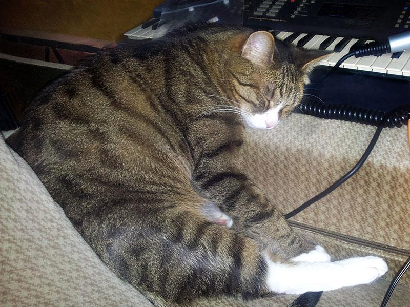 Музыкант устал