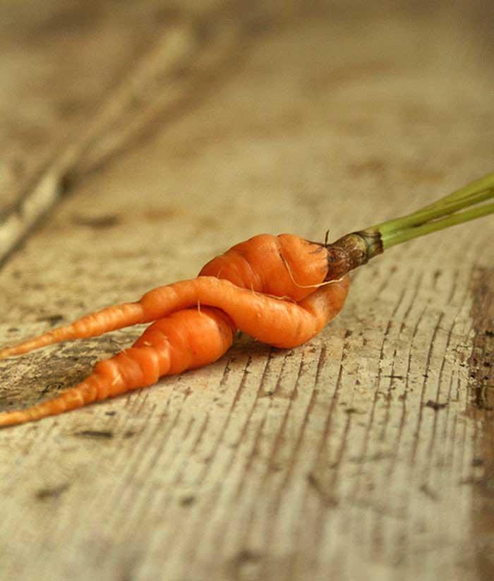 Фруктово-овощные шалости