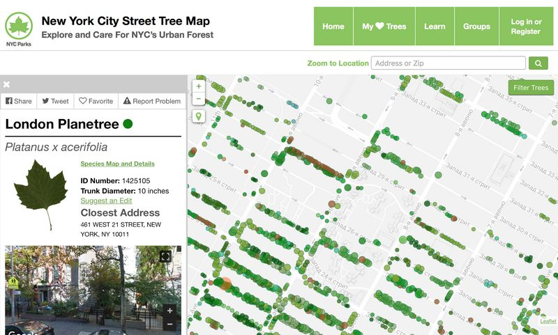 NYC-Street-Tree-Map